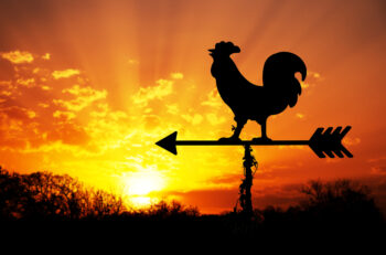 Stock Photo rooster weathervane against sunrise